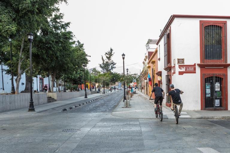 Gendron_SRS_Oaxaca_Editorial_081
