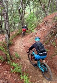 oaxaca enduro trail